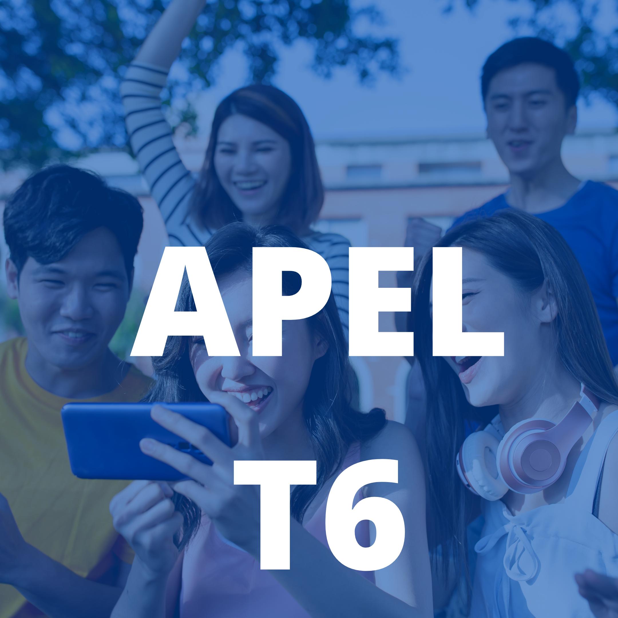APEL T6
